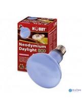 Hobby Neodymium Basking Spot Daylight terrárium izzó